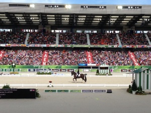 Packed stands at the  d'Ornano Stadium for the Dressage competition